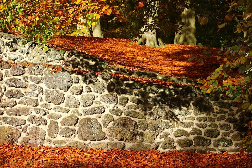 Autumn, Stone Wall, Fall Foliage, Ruin, Castle Park