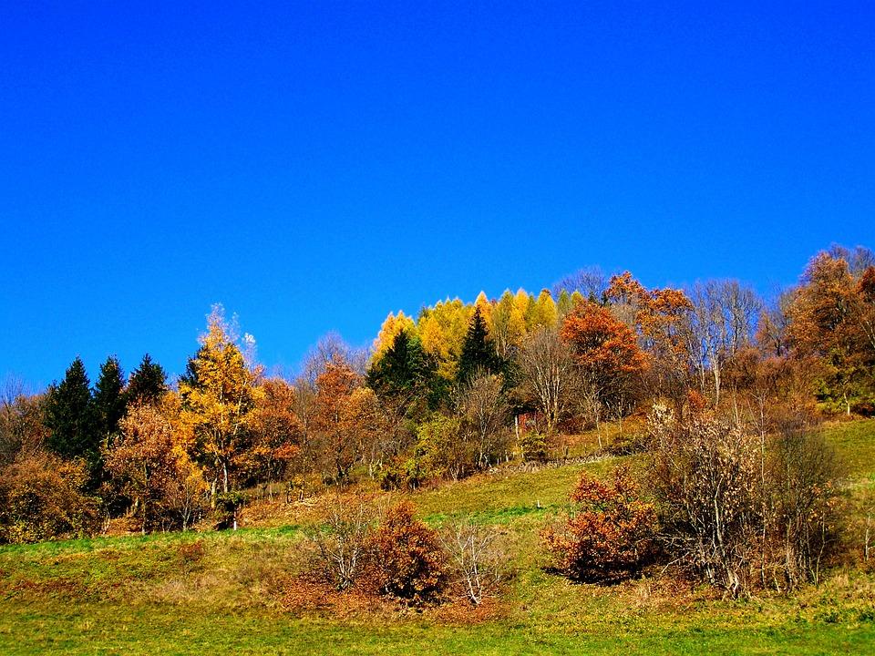 Autumn Landscape, Blue Sky, Autumn Colors