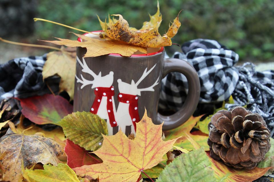 Time For Tea, Colors Of Autumn, Autumn, Foliage