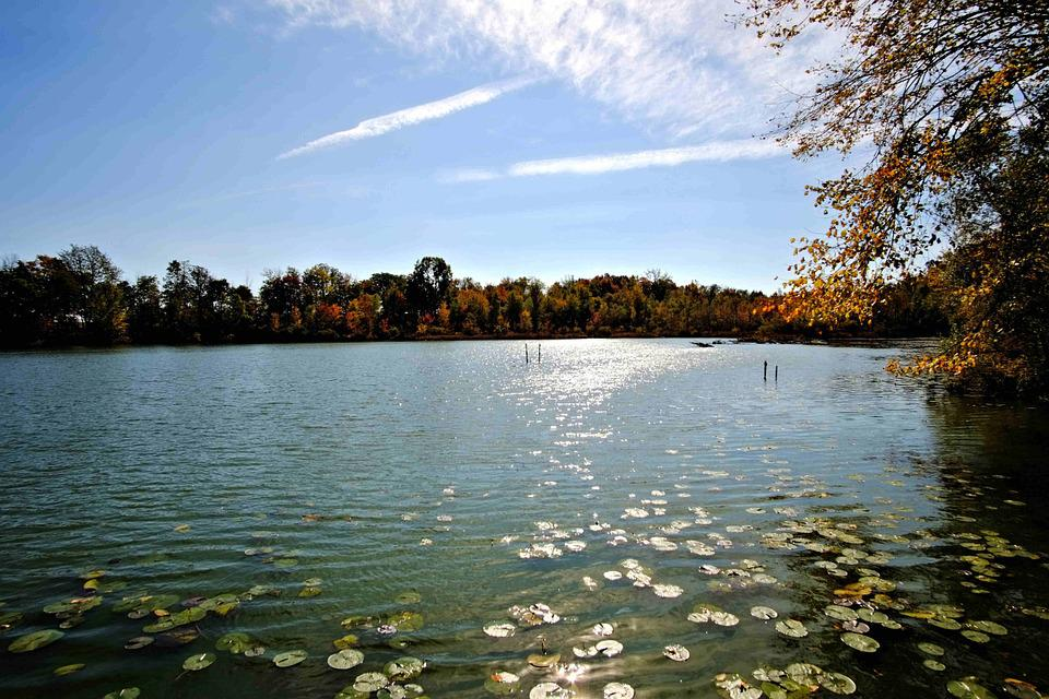 Fresh Water Lake, Inland, Sunlight, Autumn Colors