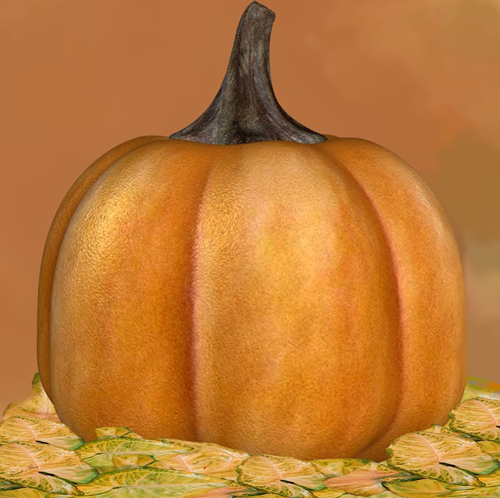 Pumpkin, Halloween, Festival, Autumn