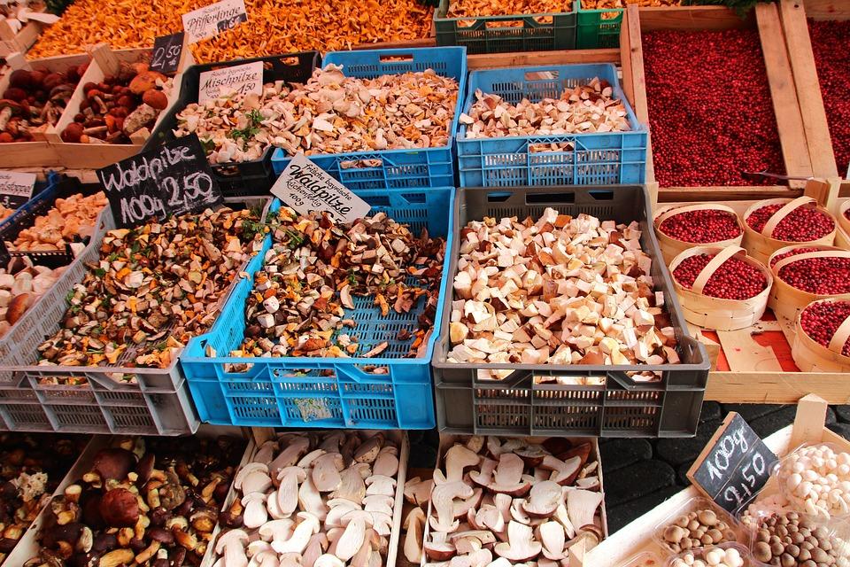 Cep, Forest, Autumn, Mushrooms, Nature, Market