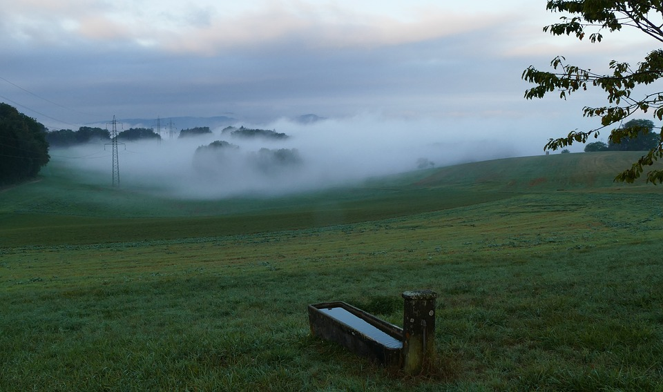 Autumn, Fog, Nature, Landscape, Fountain, Fields