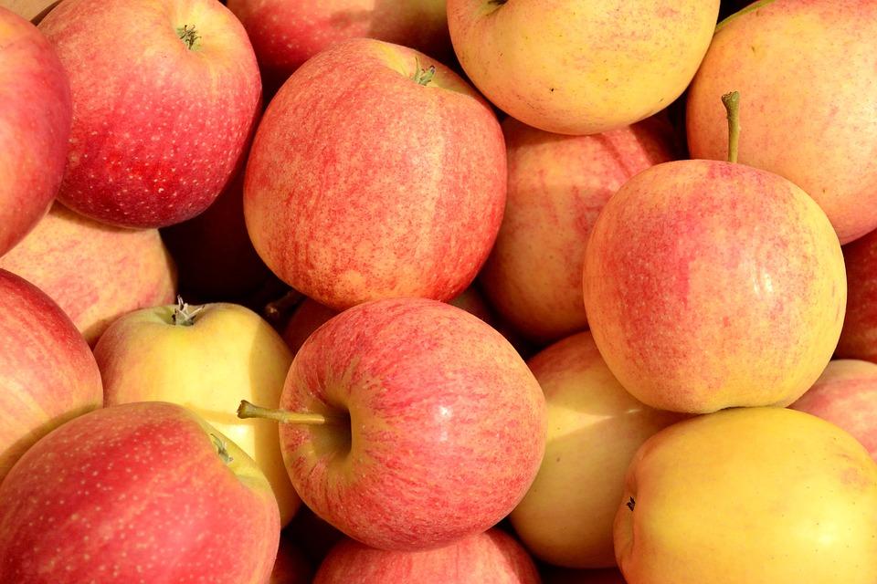 Apples, Fall, Harvest, Fruit, Food, Autumn, Seasonal