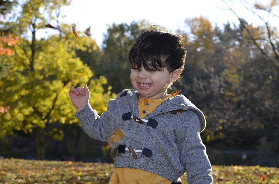 Happy Boy, Autumn, Happy, Boy, Fun, Happiness, Park