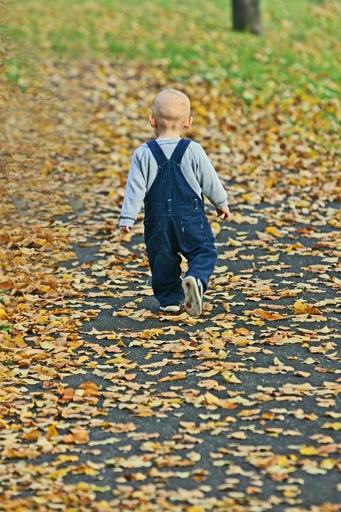 Baby, Park, Autumn, Fall Leaves, Happy, Tree