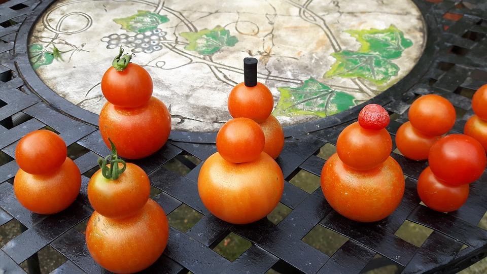Autumn, Tomatoes, Tomato, Harvest, Gardener, Crop