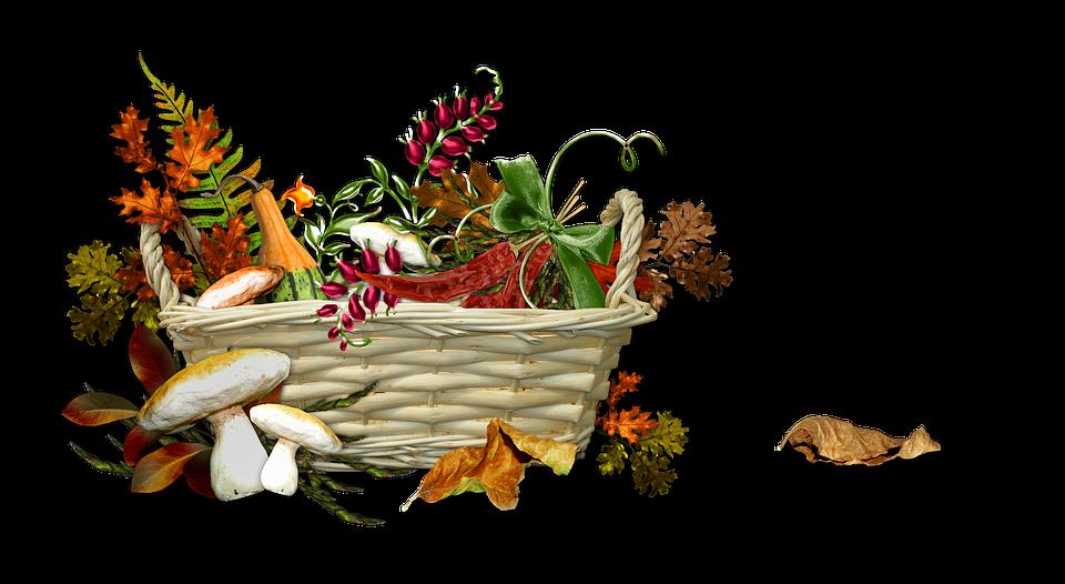 Autumn, Harvest, Season, Ripe, Nature, Basket