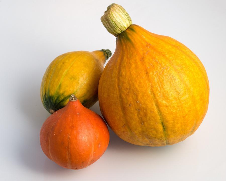 Pumpkin, Hokkaido, Hokkaidokürbis, Autumn, Harvest