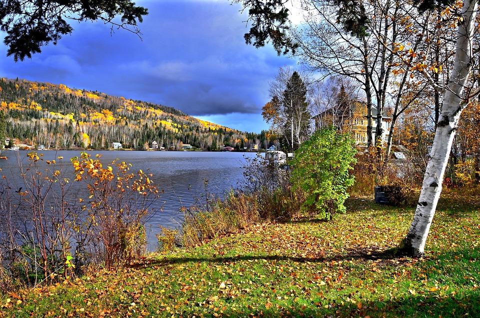 Autumn Landscape, Nature, Autumn Leaves, Colors, Fall