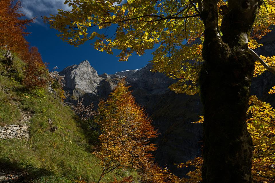 Mountain, Nature, Landscapes, Autumn Landscape