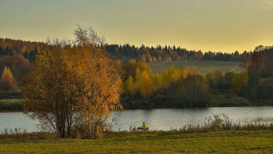 Landscape, Nature, Autumn, Lake, Evening, Picturesque