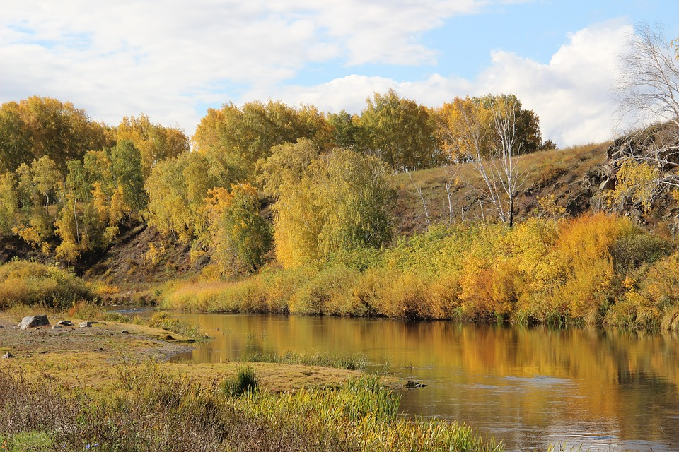 Nature, Autumn, River, Russia, Landscape