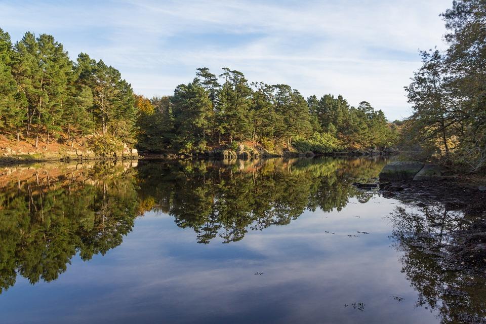 Nature, Fall, Autumn Landscape, Symmetry