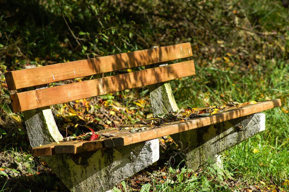 Bench, Wood, Rest, Fall, Autumn, Leaf, Leaves, Wooden
