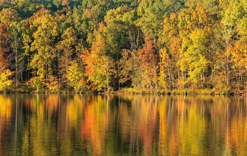 Autumn Leaves, Fall Color, Autumn Landscape