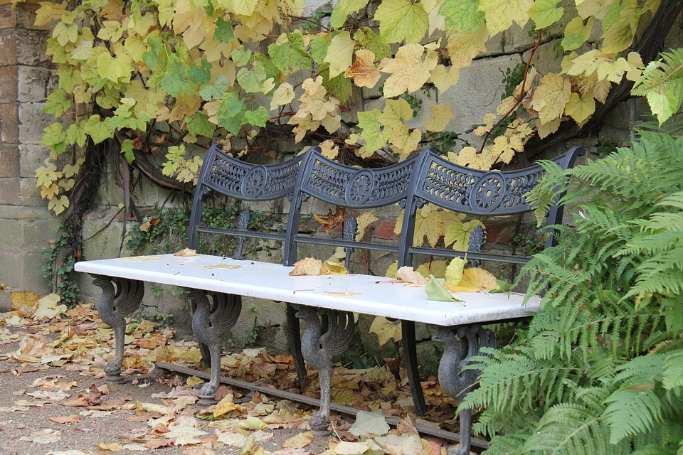 Bank, Autumn, Leaves, Rest