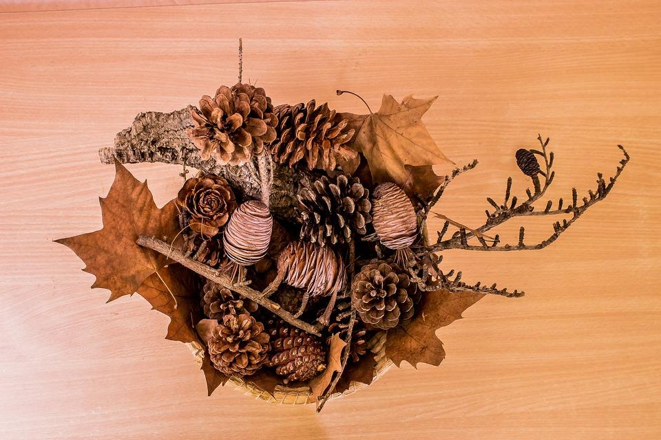 Autumn, Leaves, Pineapples