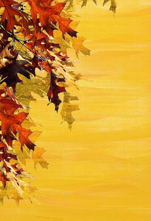 free photo autumn leaves stationery emerge background max pixel
