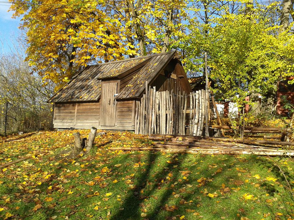 Wooden, Hut, Woods, Forest, Autumn, Outdoors, Lifestyle