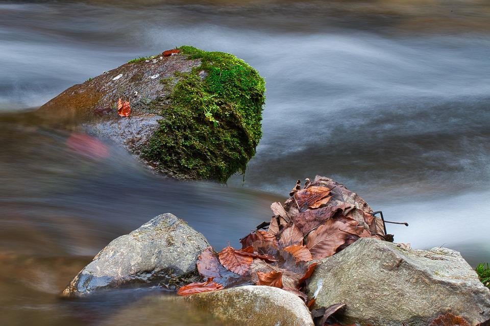 Water, Stone, Bach, Long Exposure, Autumn
