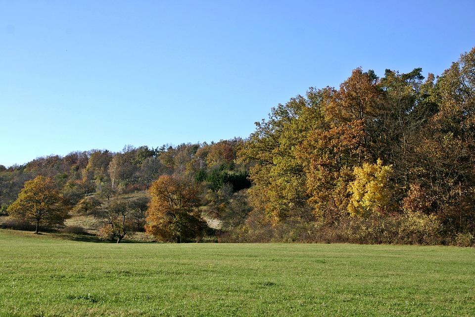 Autumn Landscape, Landscape, Autumn Mood, Autumn