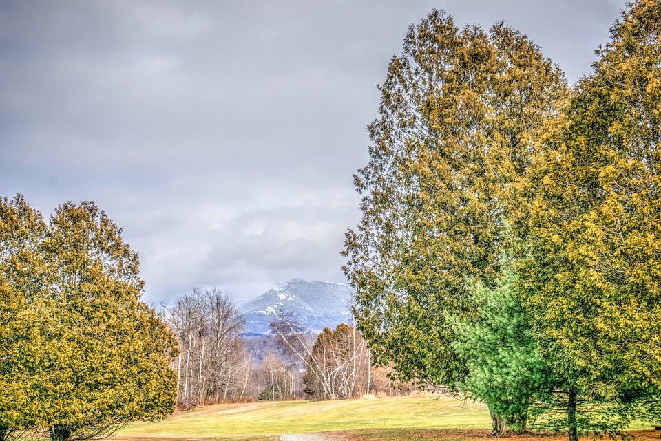 Vermont, Rural, Landscape, Fall, Autumn, Nature, Trees