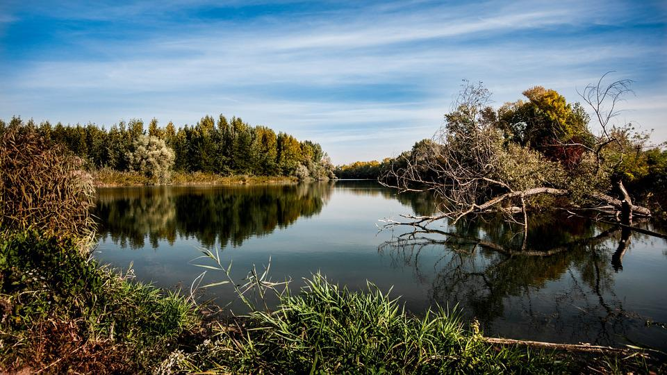 Autumn, River, Nature, Flowing Water, Water, Trees