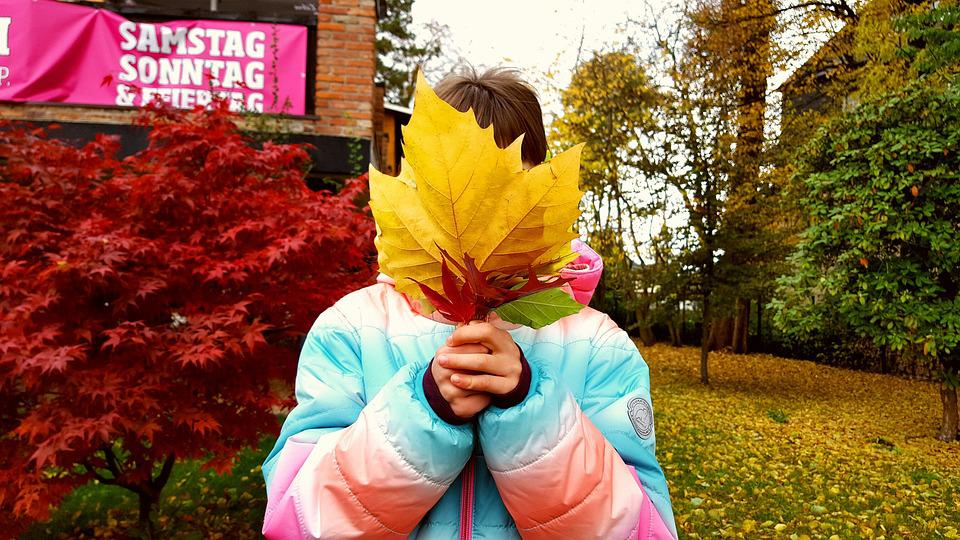 Child, Girl, Autumn, Leaves, Nature, Hide, October