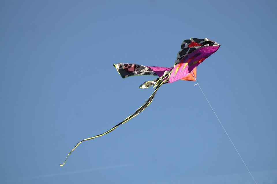 Flying, Kite, Autumn, Sky, Wind, Outdoor, Activity
