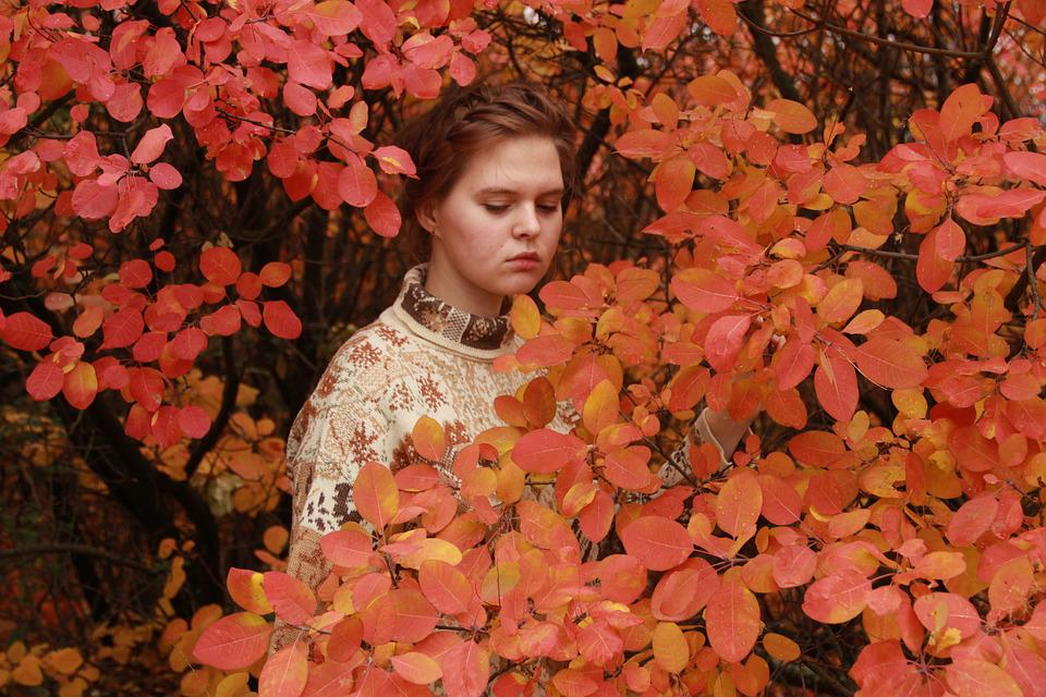 Nature, Outdoors, Autumn, Sheet, Flower, Red, Plant