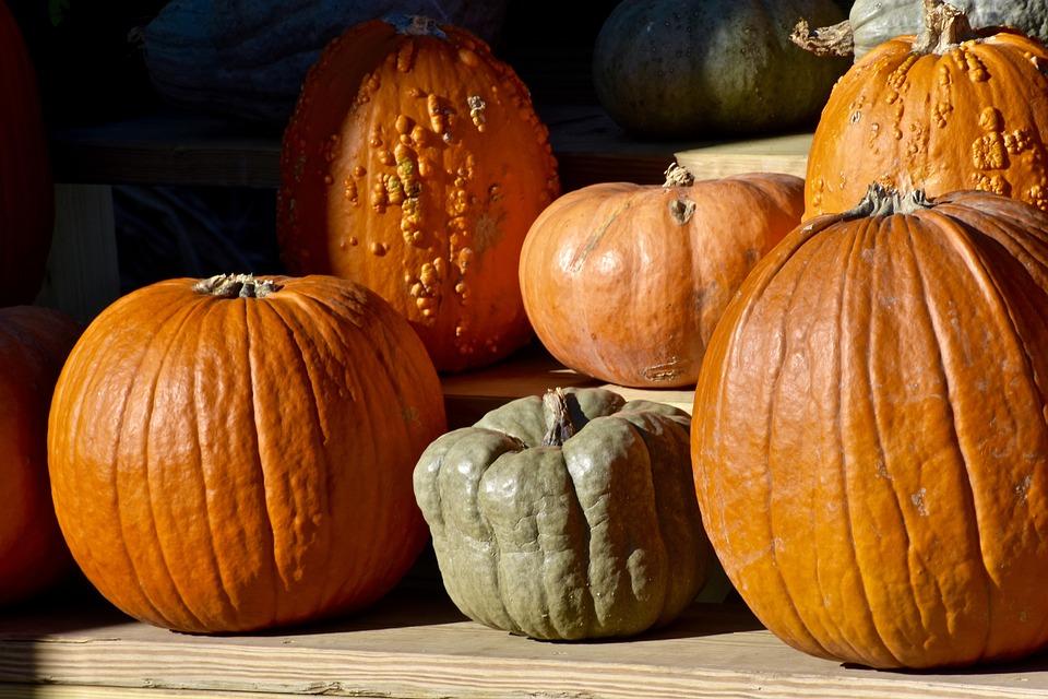 Pumpkin, Hay, Farm, Rural, Nature, Harvest, Autumn