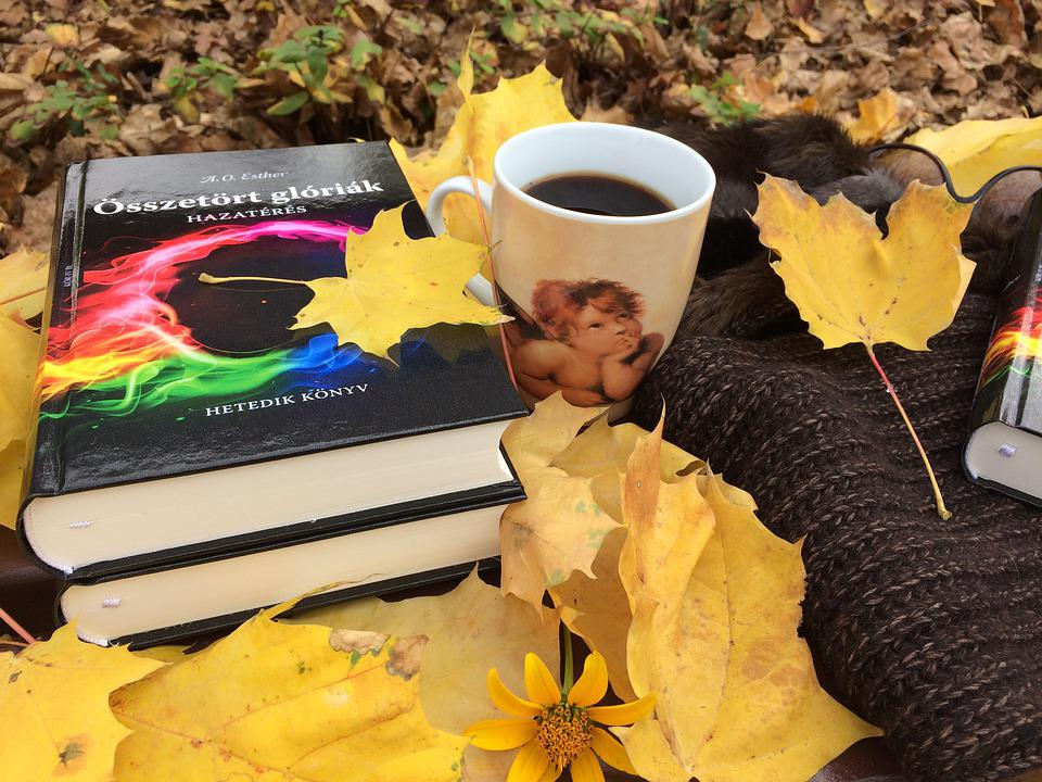 Autumn, Book, Reading, Leaves, Color, Nature, Garden