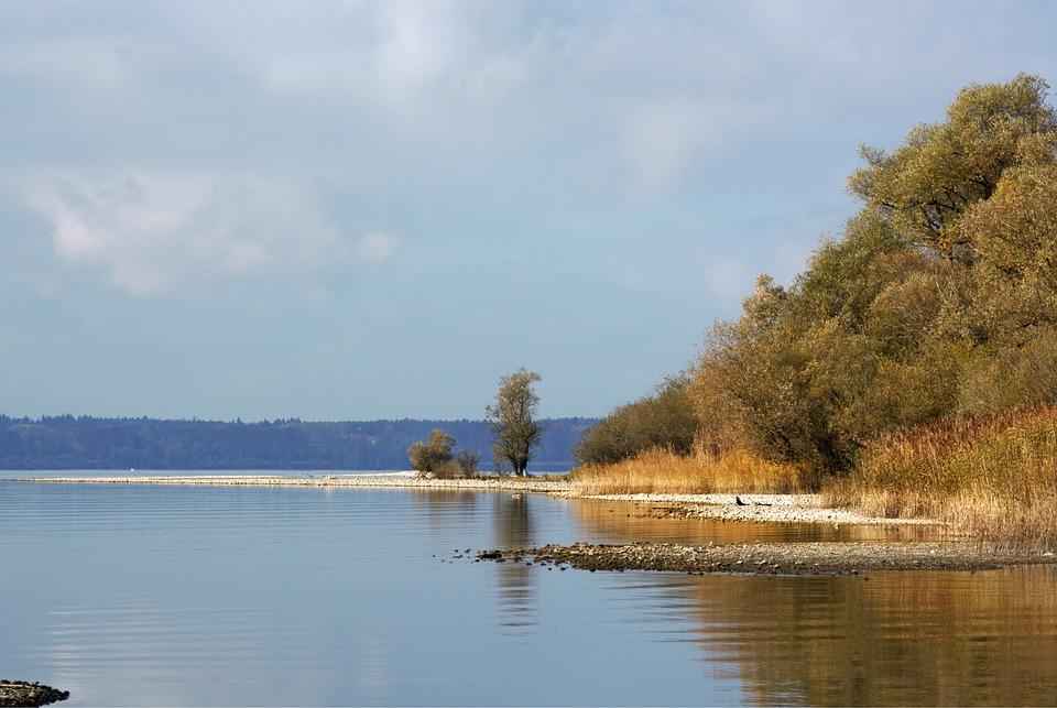 Autumn, Bank, Trees, Reed, Lake, Water, Autumn Colours