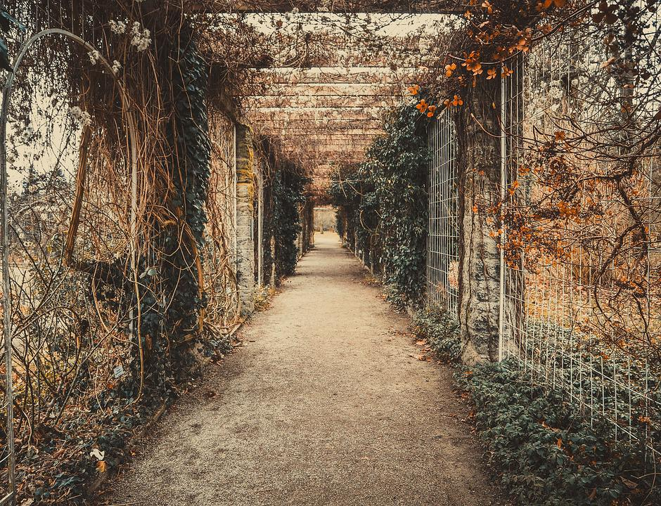 Romantic, Tunnel, History, Autumn, Roses, Charming