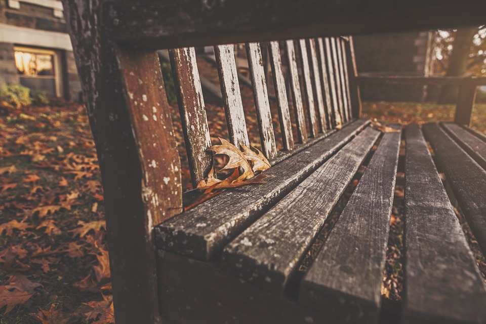 Bench, Park, Rest, Autumn, Fall, Wood, Old, Rustic