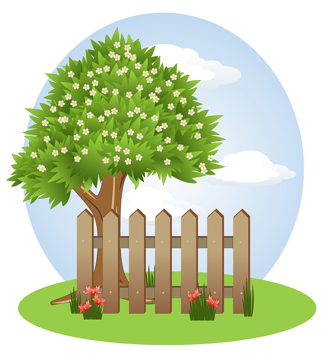 Background, Spring, Winter, Summer, Autumn, Tree, Fence