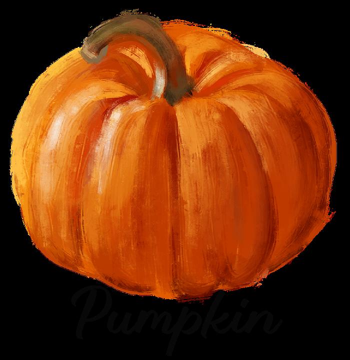 Pumpkin, Squash, Vegetable, Autumn, Drawing, Cutout