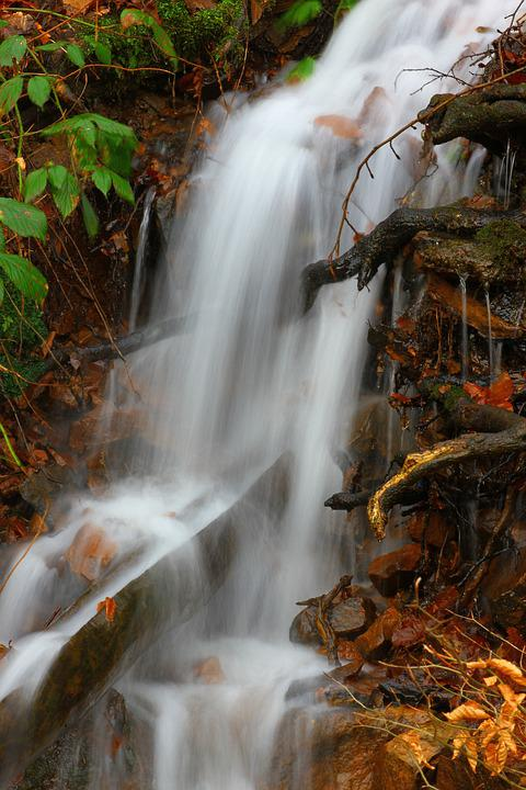 Waterfall, Nature, Waters, Autumn, Wood, Source Water