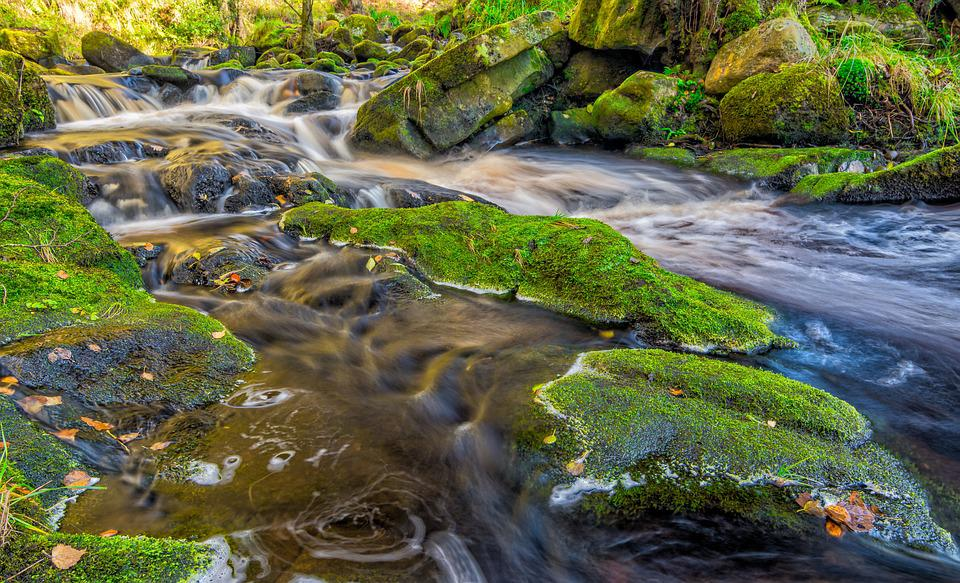 Stream, Autumn, Yorkshire, Valley Of Desolation