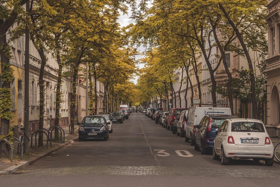 City, Avenue, Trees, Spring, Road, Cityscape, Live