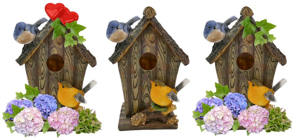 Aviary, Spring, Deco, Nesting Box, Hatching, Hydrangeas