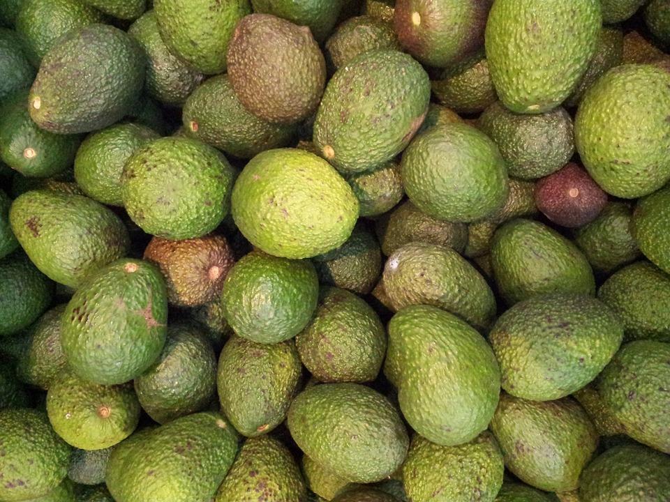 Avocado, Green, Vegetable, Fresh, Healthy, Organic