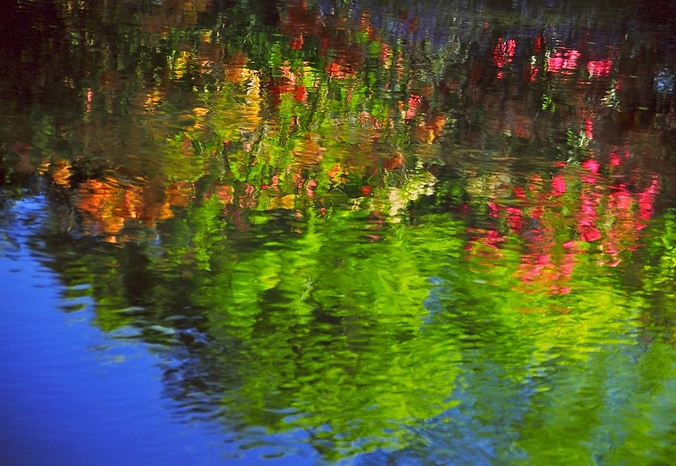 Reflections, Avon River, Christchurch, New Zealand