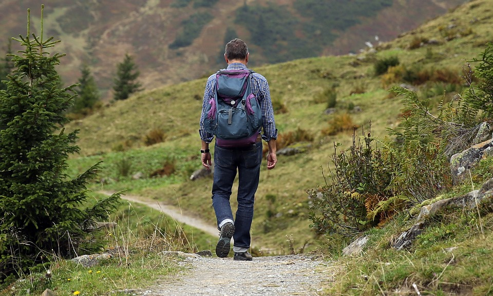 Wanderer, Backpack, Hike, Away, Path, Mountain Hiking