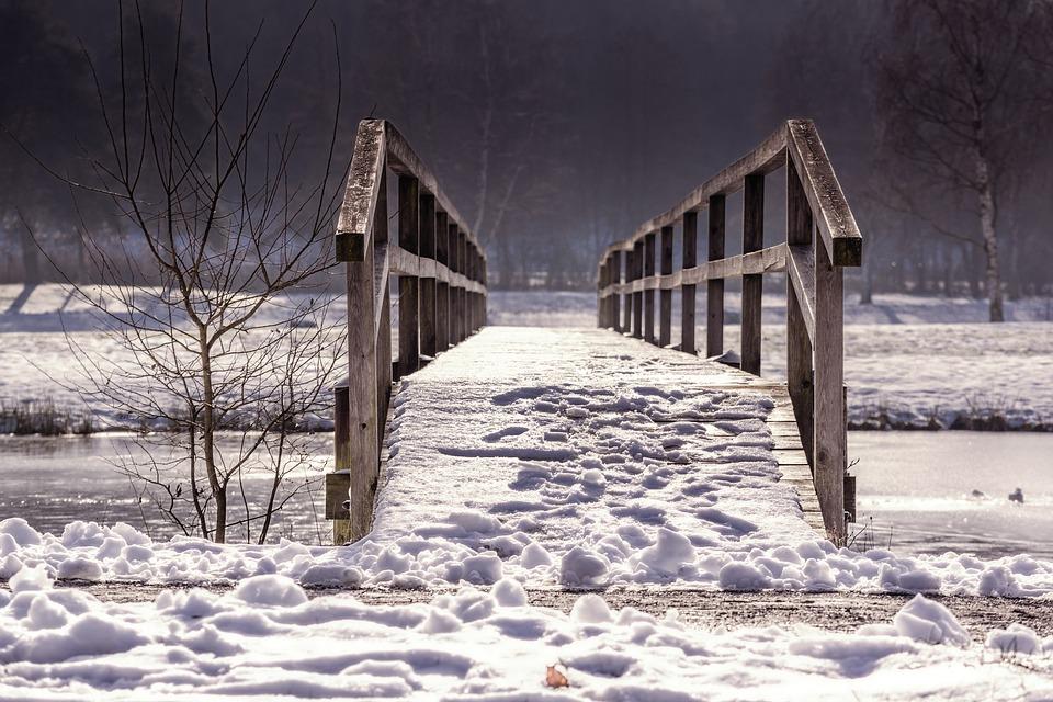 Away, Bridge, Web, Railing, Winter, Nature, Wood