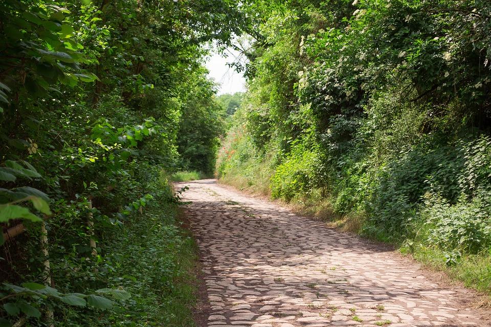 Nature, Patch, Stones, Landscape, Away, Path, Trail