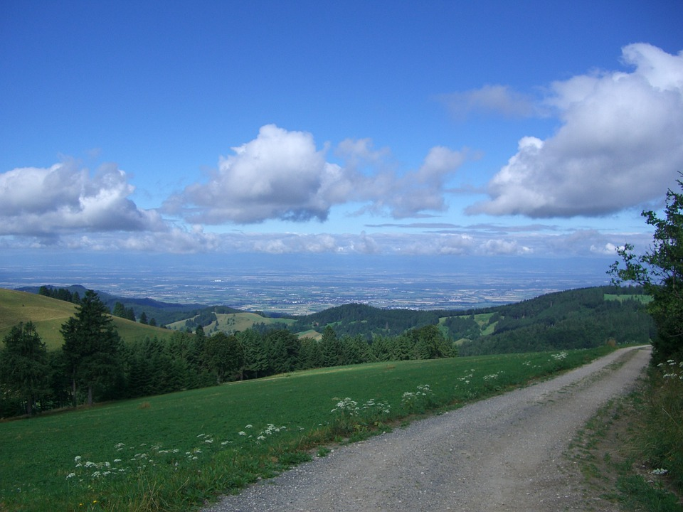 Away, Trail, Outlook, Black Forest, Rhine Valley, View