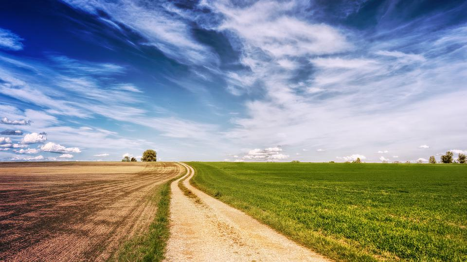Fields, Road, Landscape, Sky, Away, Grass, Nature