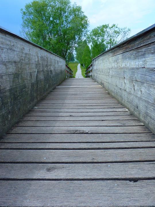 Bridge, Web, Away